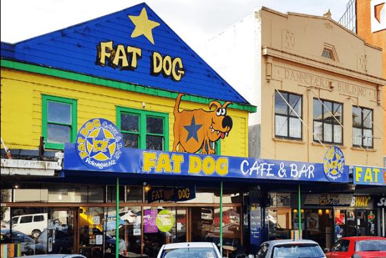 cafe the fat dog in Rotorua