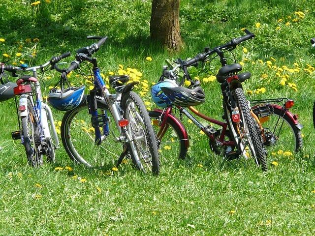 bike tour Spreewald