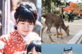 Things to do with kids Kansai Japan